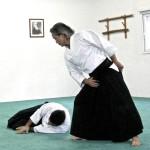 Dojo-Aikido-Takemusu-Aiki-demo