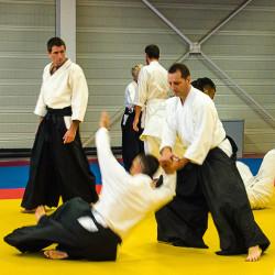 aikido-Rencontres-Takemusu-Aiki12b